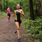 sport gesundheitspark